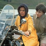 harold-and-maude still.jpg